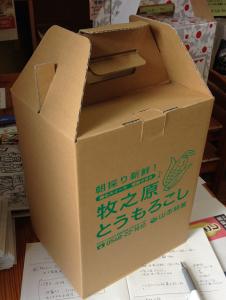 キャリーケース合成-1
