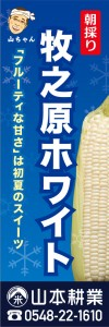 ホワイトコーンt-1345-yamamoto-20160331_03