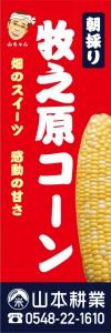 t-1345-yamamoto-20160331_06